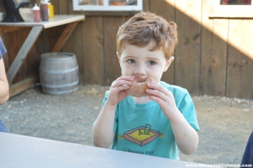 Munching on the famous cider donuts at Belltown Hills Orchards in Glastonbury, CT