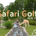 Safari Golf in Berlin, CT