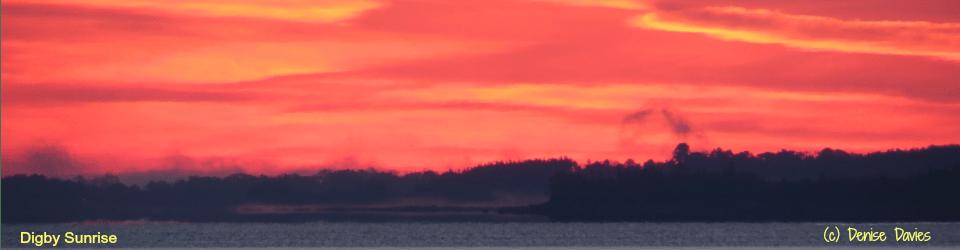 Digby Sunrise