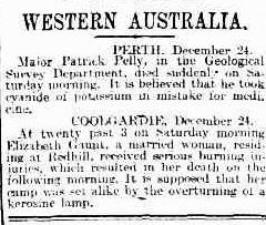 Evening Journal Adelaide 26 December 1899, page 3
