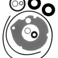 Sierra International 18-2683 Marine Lower Unit Seal Kit for Johnson/Evinrude Outboard Motor