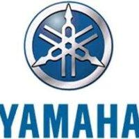Yamaha 69J-13440-01-00 Element Assy, Oil Cl; Outboard Waverunner Sterndrive Marine Boat Parts
