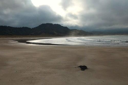 Waikawau Bay, Coromandel