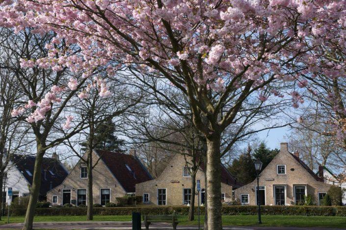 Het Dorp. Foto: Klaas Leerlooijer