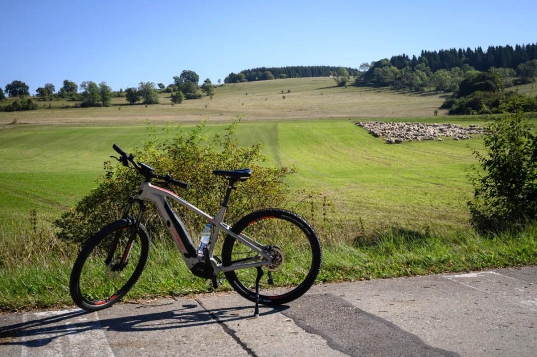 Mountainbike schapen Münsingen