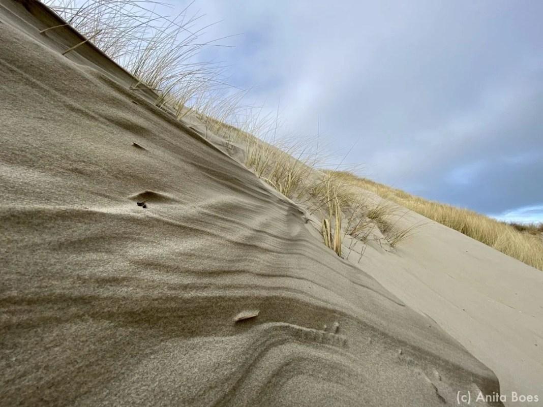 De wind is een buitengewone kunstenaar.