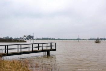 De Nederrijn tussen Doorwerth en Driel