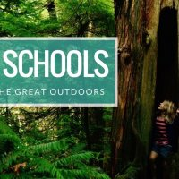 Forest Schools: Education in the great outdoors