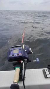 揺れまくる船の上で、深海からの魚信をとらえるのは集中力と忍耐が必要