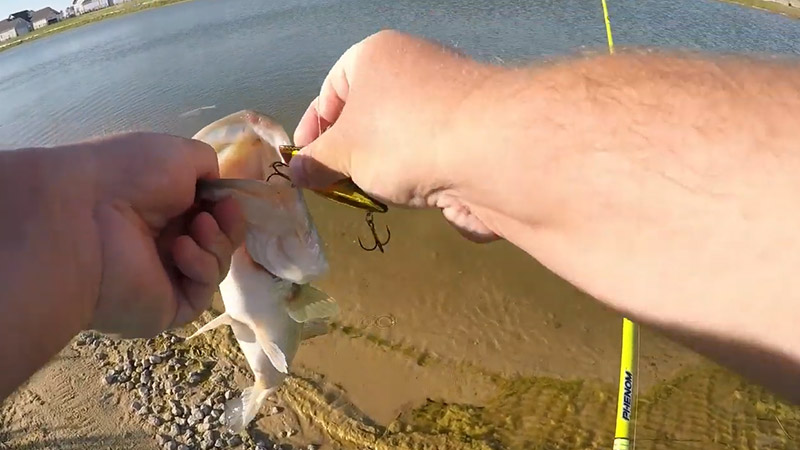 How To Remove A Treble Hook From A Fish FI