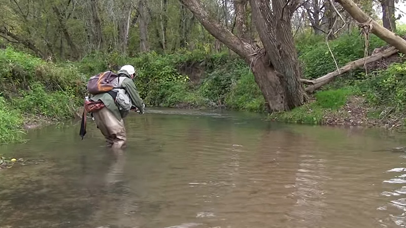 Trout Fishing Without Fly Rod Fi