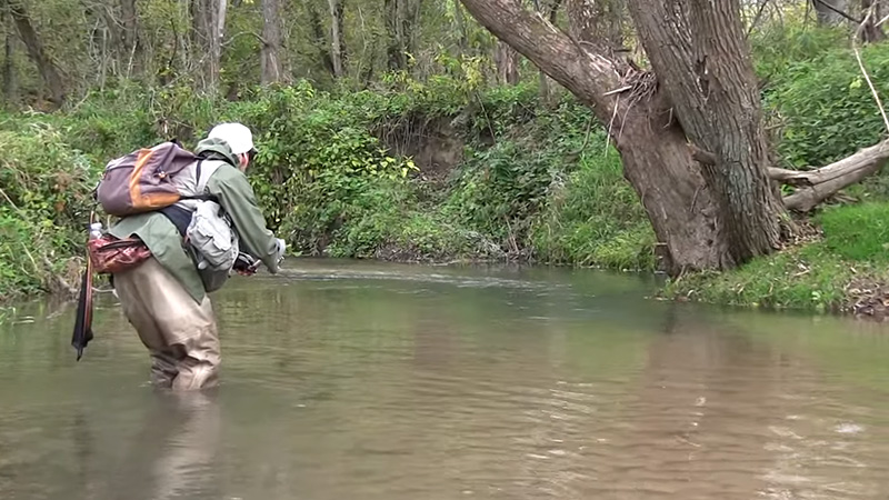 Trout Fishing Without Fly Rod