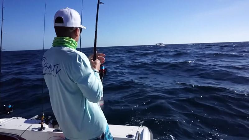 Where To Go To Find The Blackfin Tuna