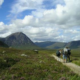 Walkers on Blackmount