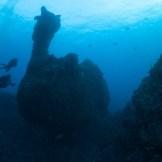 Photo by Bruno Kinross / Mafia Island Diving