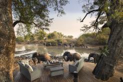 1._kanga_camp_elephants_walking_past_the_main_deck