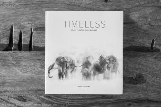 23_Timeles_cover