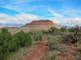 Once you get down onto the mesa, the trail gets nice and flat, due to the erosion-prone soil.