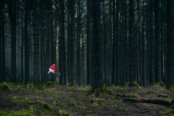 The Haunted Forest. Photo: Lorenz Holder