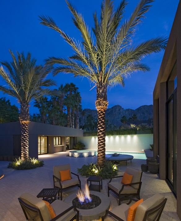 holiday wilmington palm tree lighting