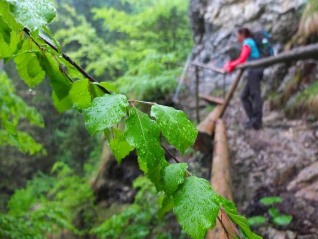 Hüttentour-Tannheimer-Berge (6).JPG