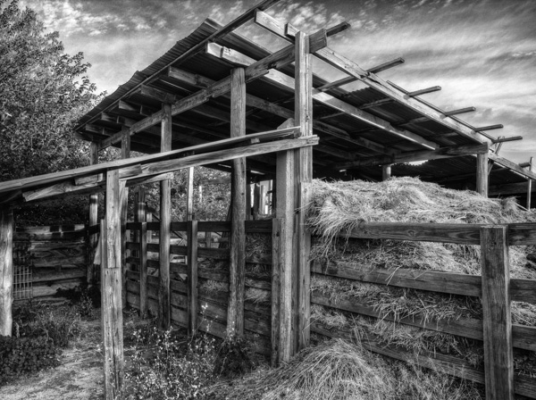 Ft. Worth Stockyards: Example of black and white photography