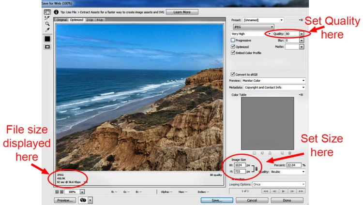 The Save for Web dialogue box in Photoshop