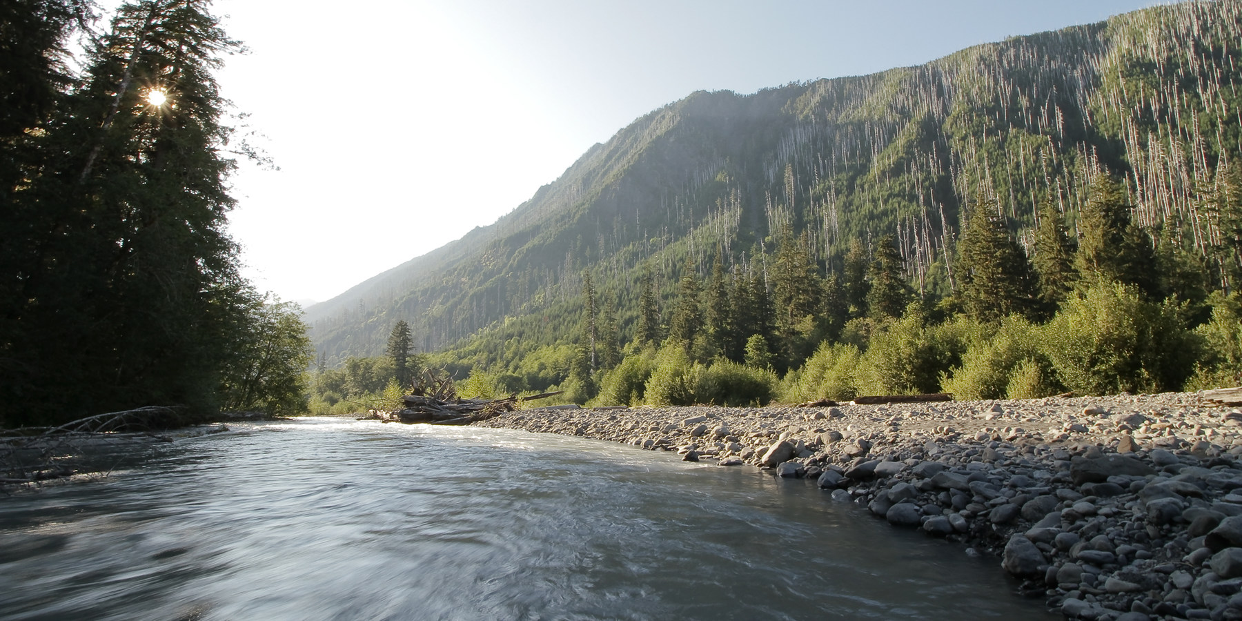 Olympic National Park Outdoor Project