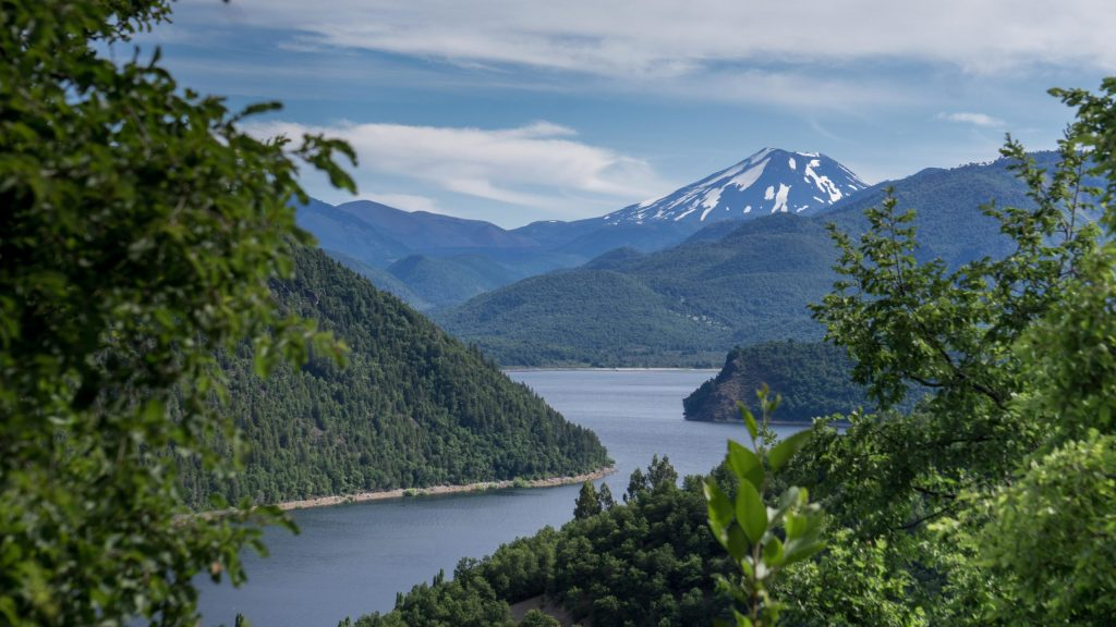 Cycling the monkey puzzle trail in Chile