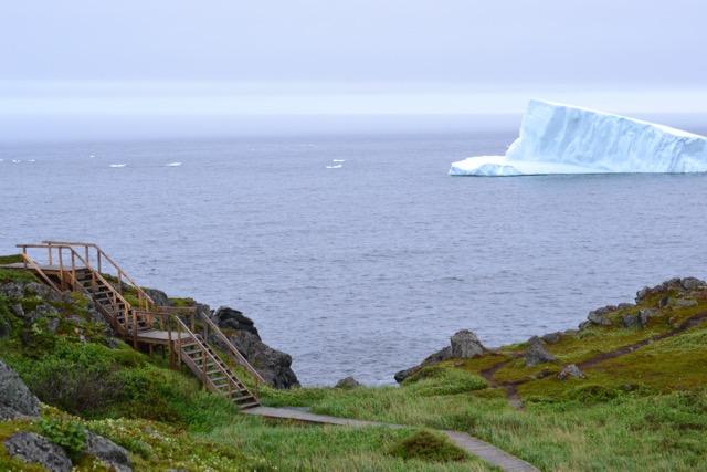 Exploring the Northern Peninsula