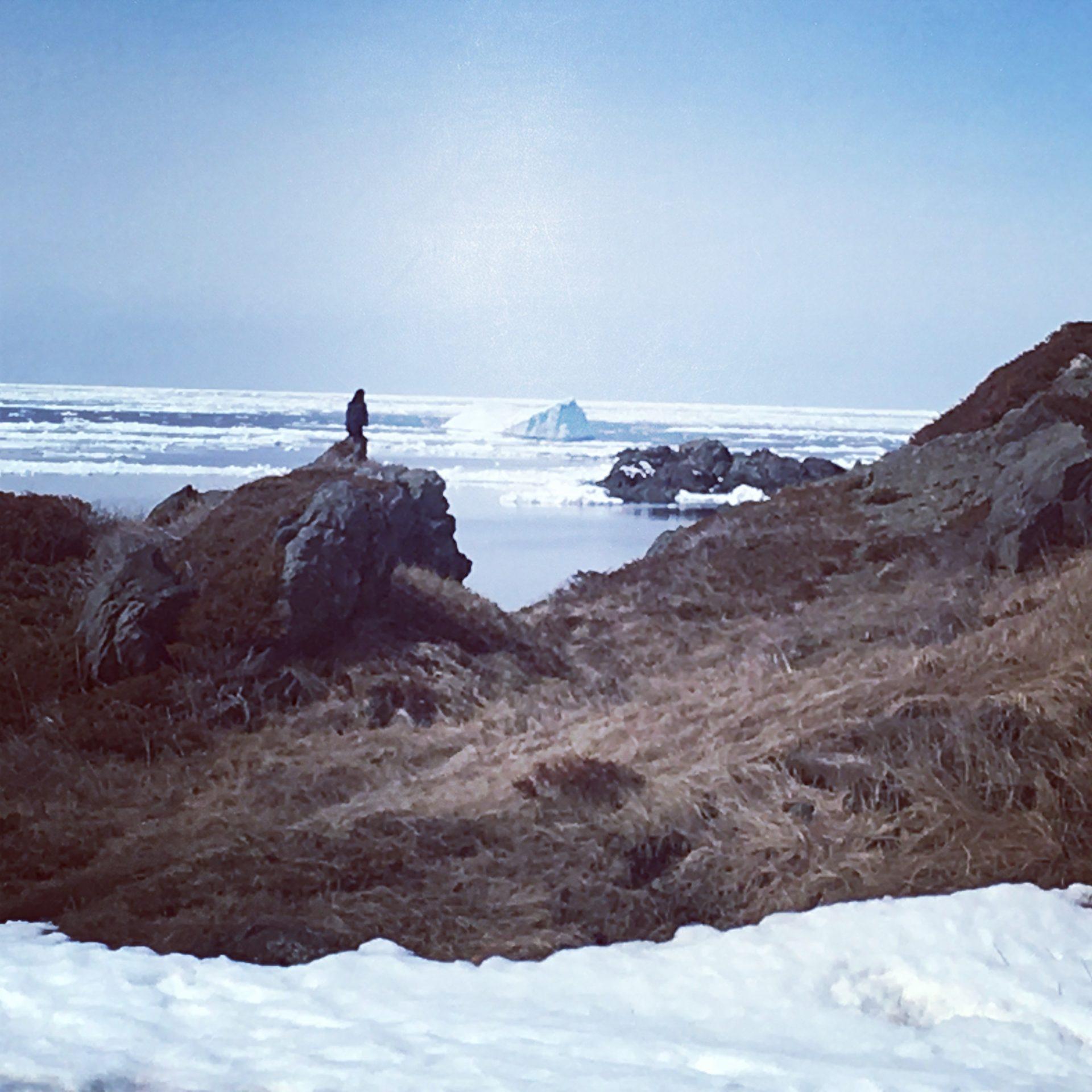 Iceberg Hunt