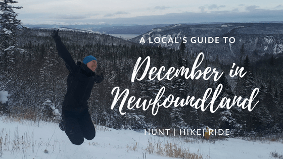 A Locals Guide to December in Newfoundland