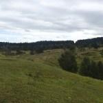 Blick vom Schlangenberg