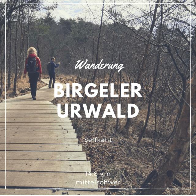 Wanderung Birgeler Urwald
