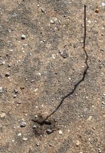 Stick method - one mark