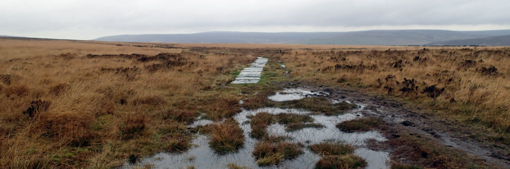 Getting into the first moor with very boggy path ahead