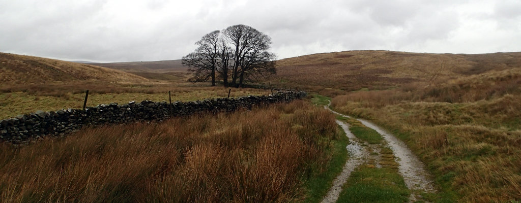 Joining the Pennine Bridleway for some speed hiking
