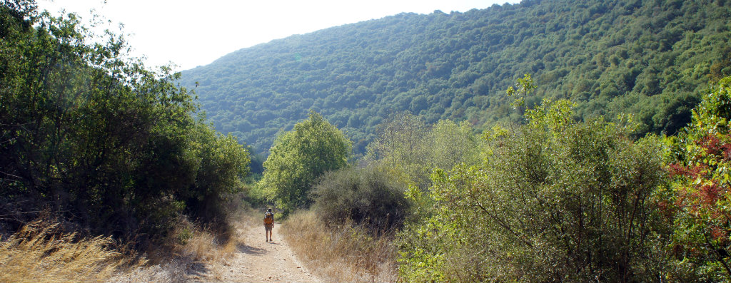 Hiking along the Kziv Stream in Northern Israel