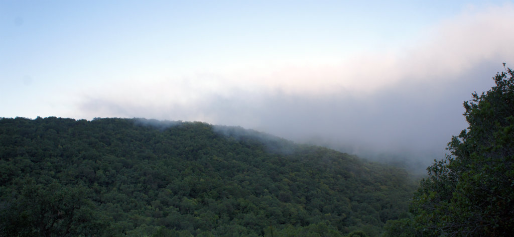 Low cloud on the Meron mountain