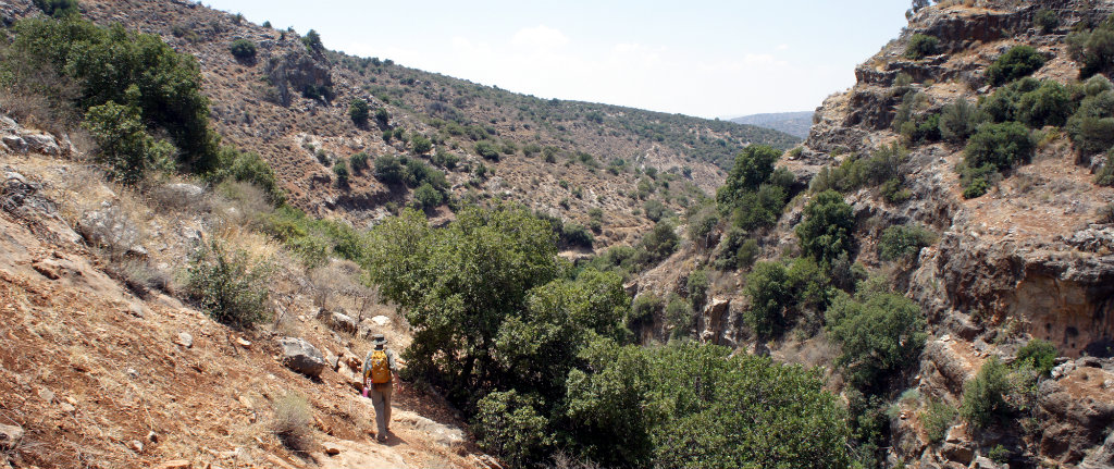 Outdoors Fatherism - Amud Stream, Israel
