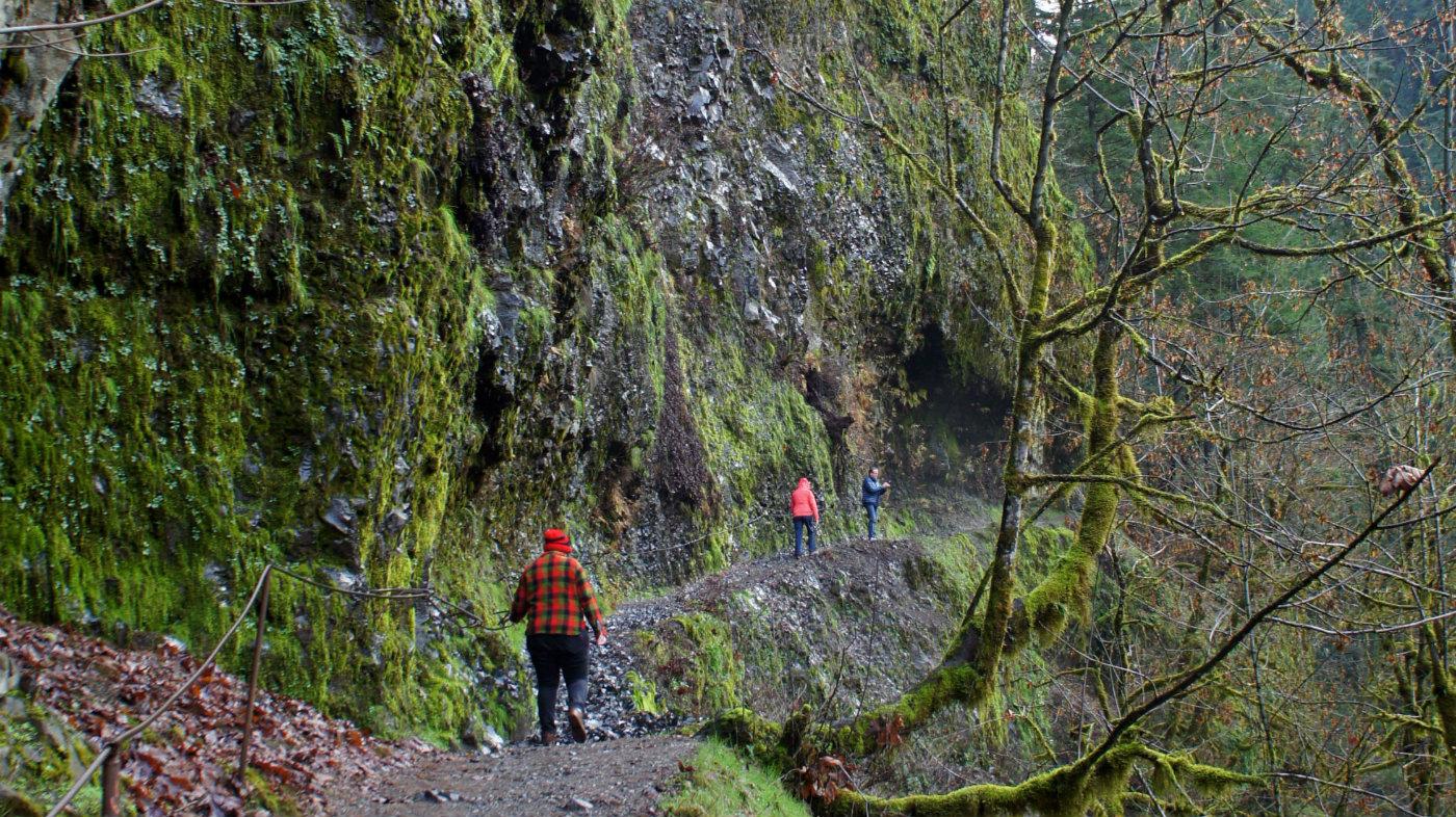 Eagle Creek trail in season - busy