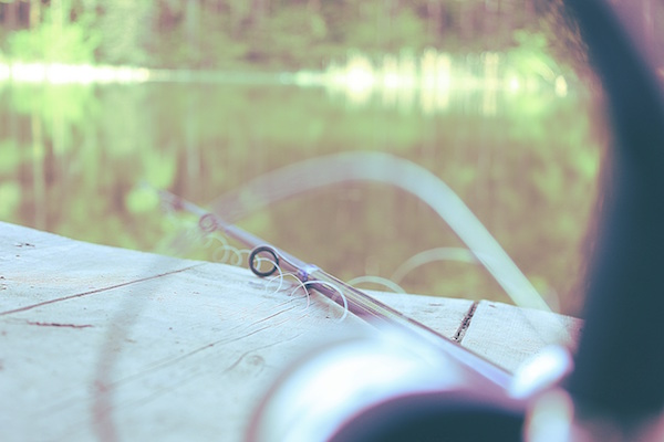 Fishing Rod with Line over Water
