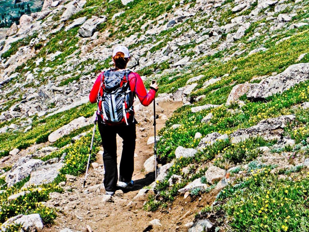 Trail up Mount Yale Colorado