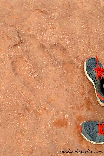 Warner Valley Dinosaur Tracks in Utah