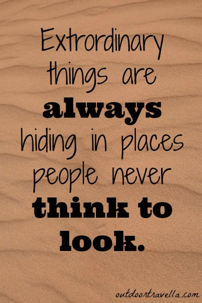 Extraordinary things are always hiding in places people never think to look.