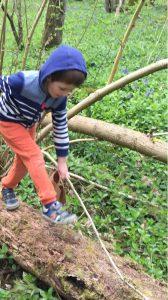 boy walking along tree trunk
