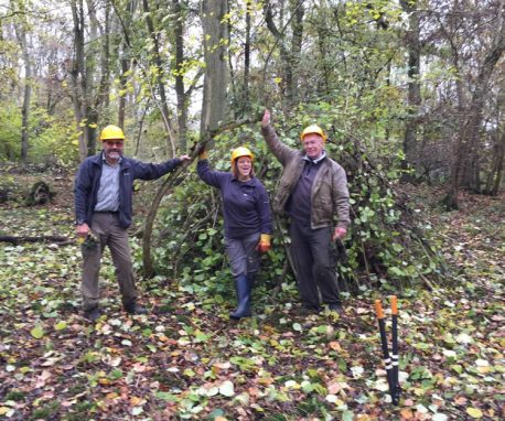 Woodland Working Parties