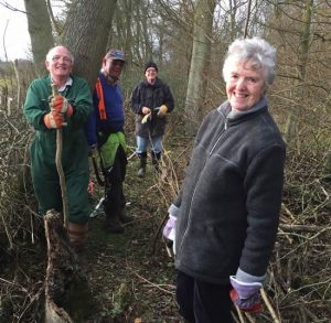 4 adult workers in woodland