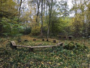 circular seating in woodland