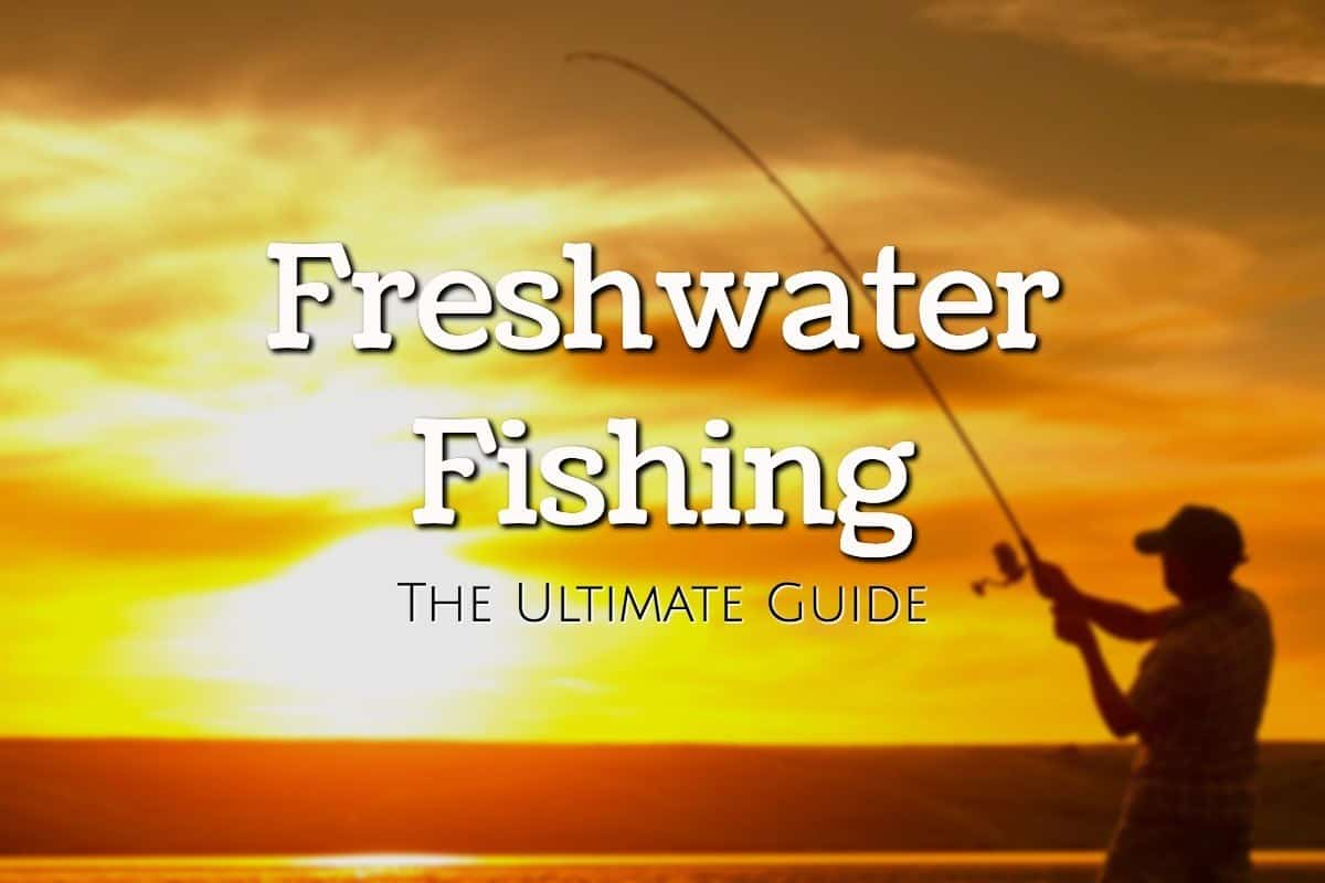 Freshwater Fishing Guide